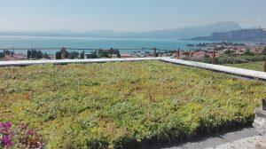 posa strato vegetazione copertura piana